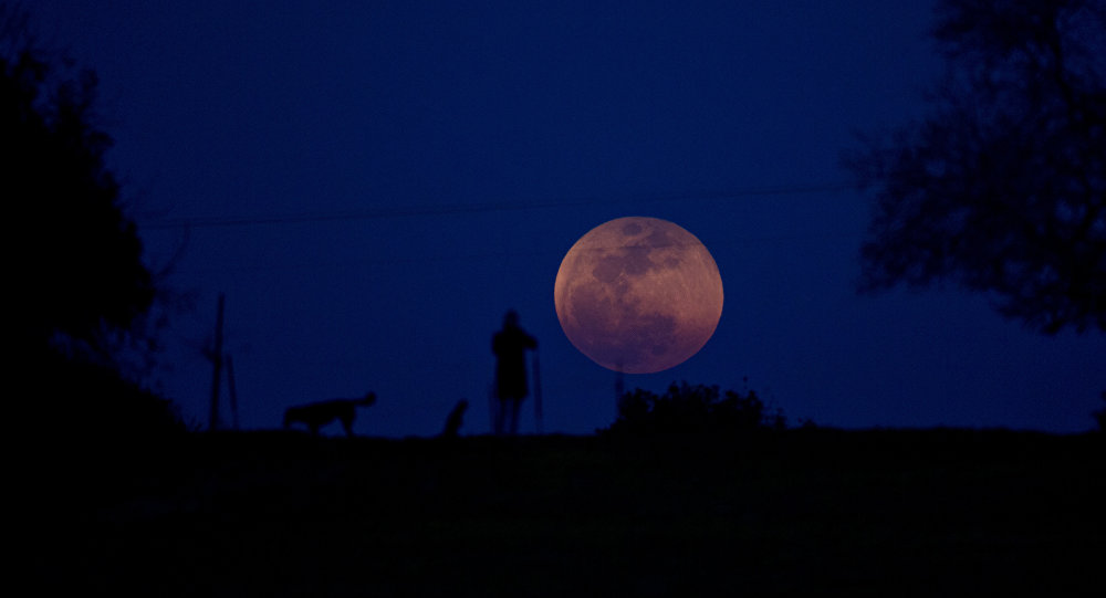 A person and a dog watch as the super blue blood moon rises over Michmoret Israel Wednesday Jan. 31 2018