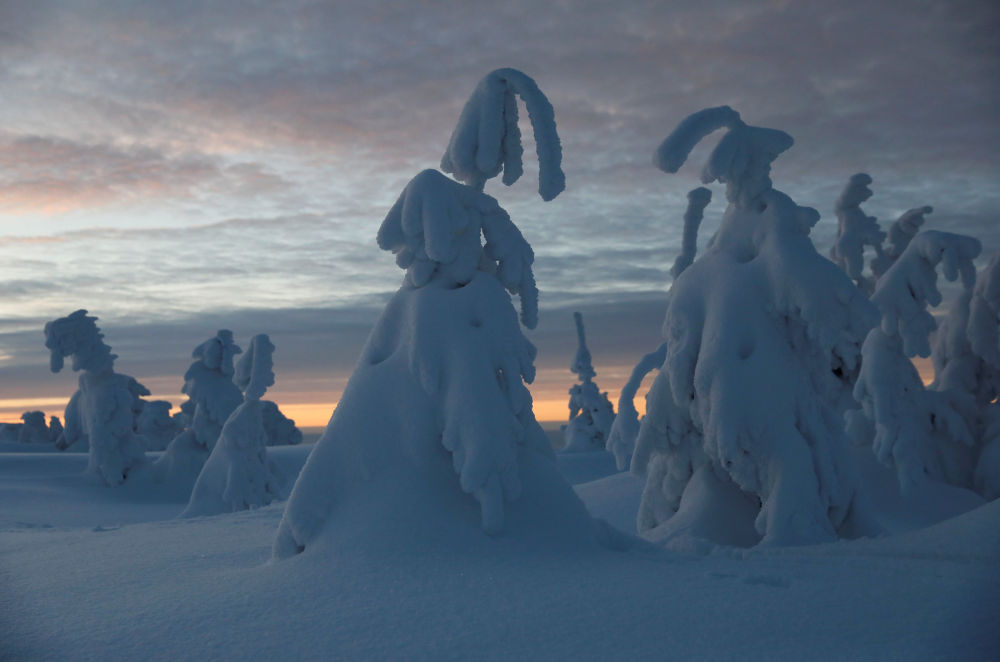 Breathtaking Winter Photos From Around the World