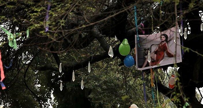 Virgin tree at Hindu College: Delhi college students pray to lose virginity here