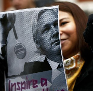 A supporter of Julian Assange holds a poster after prosecutor Ingrid Isgren from Sweden arrived at Ecuador's embassy to interview him in London