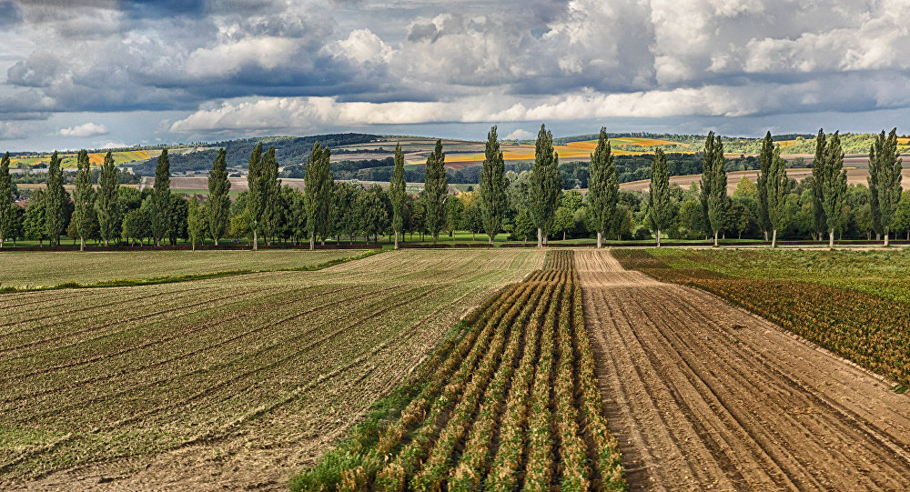 Land in Austria