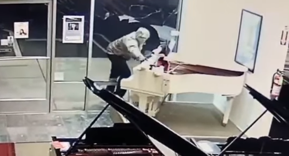US Man Shatters Window, Steals Stuffed Mickey Mouse from Piano Shop