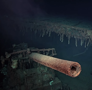 Wreckage of USS Wasp Located by R/V Petrel in the Coral Sea