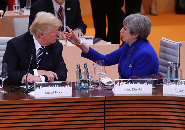 Britain's Prime Minister Theresa May talks with U.S. President Donald Trump during the working session at the G20 leaders summit in Hamburg