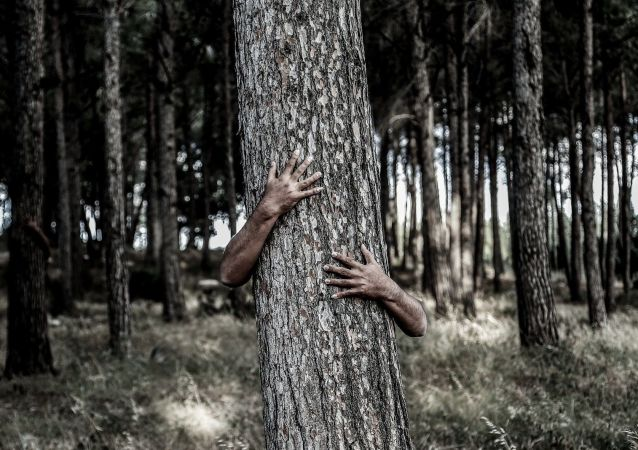 Man hiding behind a tree