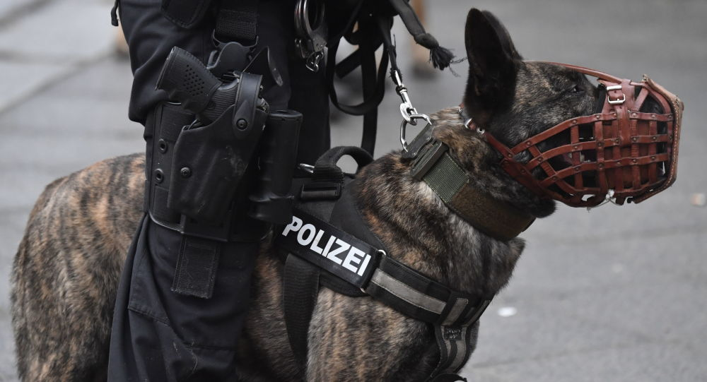 A dog of the German police k9 Unit (File)