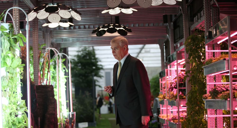 Britain's Prince Andrew, Duke of York, looks at vegetables growing under artificial light on a Grow Stack vertical farm, in the IKEA: Gardening will save the World garden, designed by Tom Dixon, at the 2019 RHS Chelsea Flower Show in London on May 20, 2019.