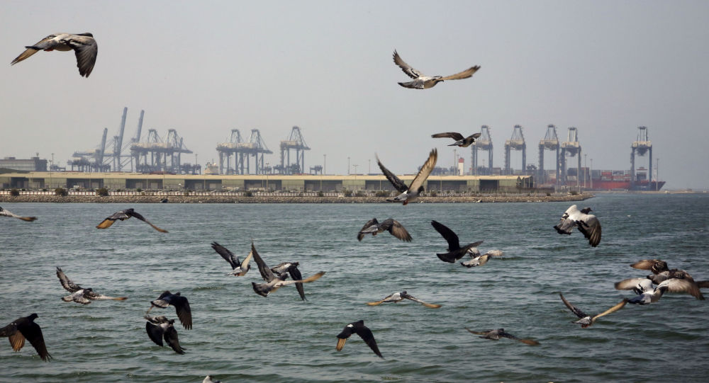 Seagulls fly in front of the Red Sea port city of Jiddah, Saudi Arabia, Friday, Oct. 11, 2019. Iranian officials say two missiles struck an Iranian tanker traveling through the Red Sea off the coast of Saudi Arabia.