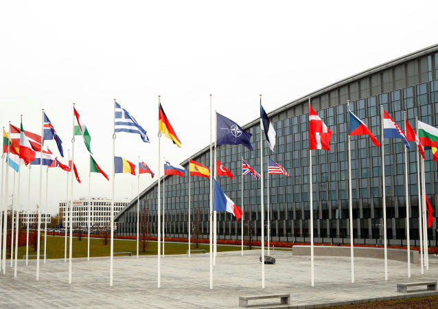 Flags of NATO member countries are seen at the Alliance headquarters in Brussels, Belgium, November 26, 2019.