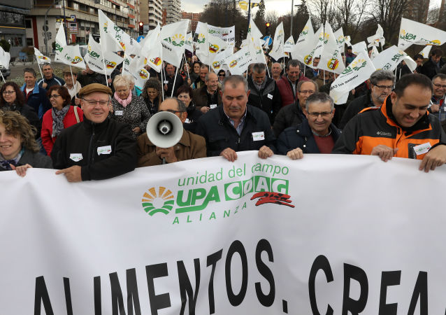 Thousands of Spanish farmers from Castilla and Leon provinces hold banners and flags as they demonstrate in Valladolid for fair prices and against the lack of policies for the rural environment that generate a depopulation of rurals area on March 3, 2017.