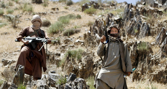 'Baseless Propaganda': Afghanistan's Gov't Rejects Claim Taliban Controls 90% of Country's Borders