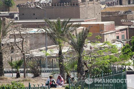 Egypt celebrates the arrival of spring
