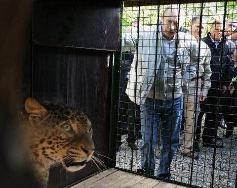 Премьер-министр РФ Владимир Путин посетил Сочинский национальный парк