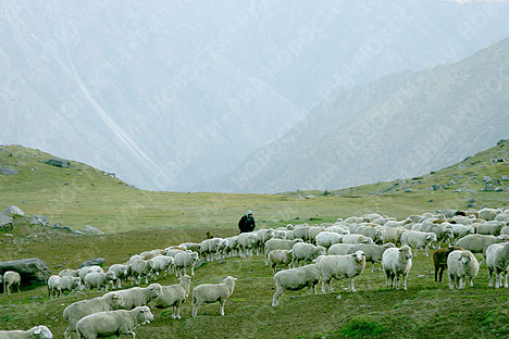 Photo tour with RIA Novosti: Kyrgyzstan Mountains
